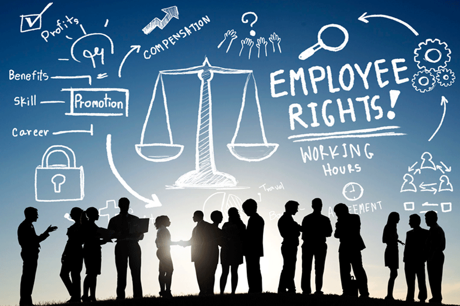 What are the Legal Rules an Employee Should Know?